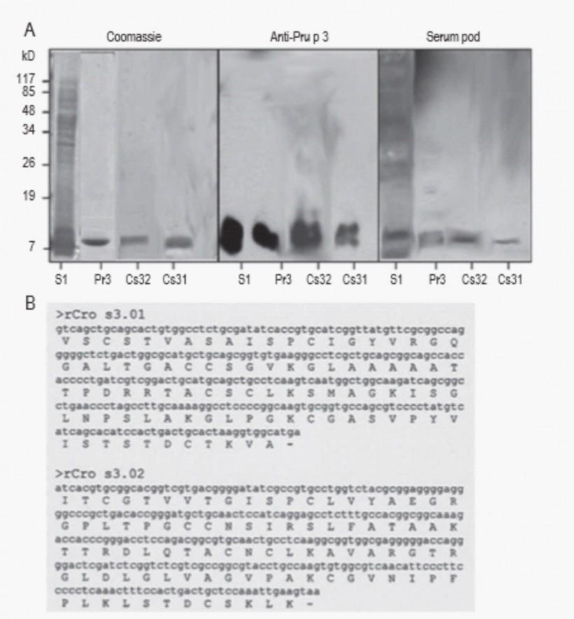Identificación, aislamiento y caracterización de los alérgenos del azafrán (Crocus sativus) (PI-2007/61)