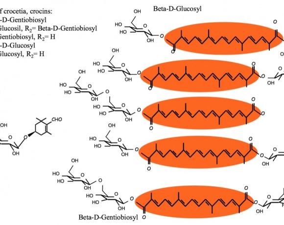 Glucosiltransferasas implicadas en el metabolismo secundario de la especia azafrán (Crocus sativus)