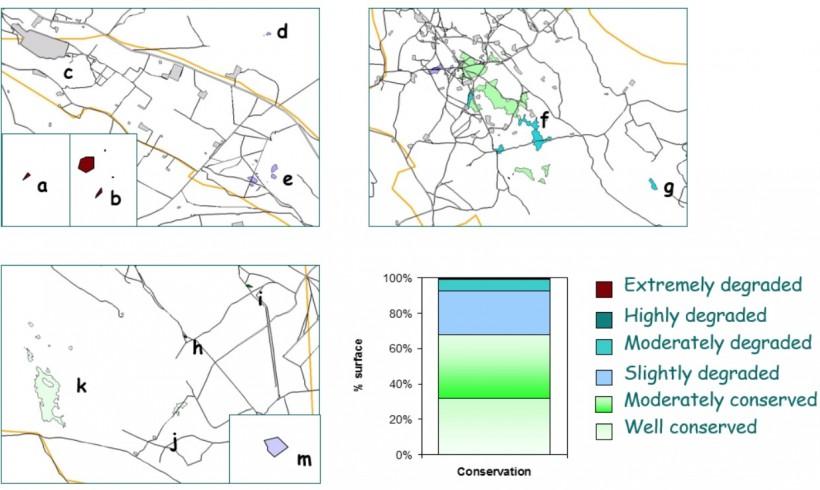Inventario, cartografía de distribución y evaluación del estado de conservación de la especie en peligro de extinción Helianthemum polygonoides