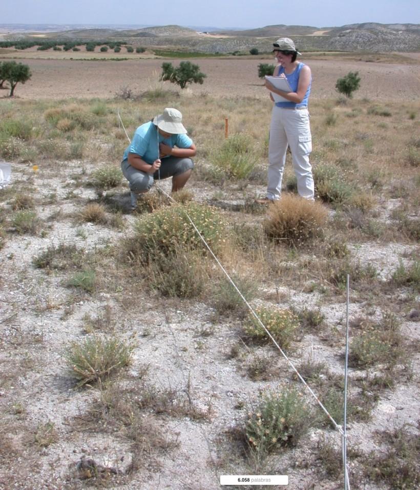 Caracterización de la sucesión vegetal tras el abandono de cultivos en comunidades gipsícolas de La Mancha (Mesa de Ocaña, Toledo)