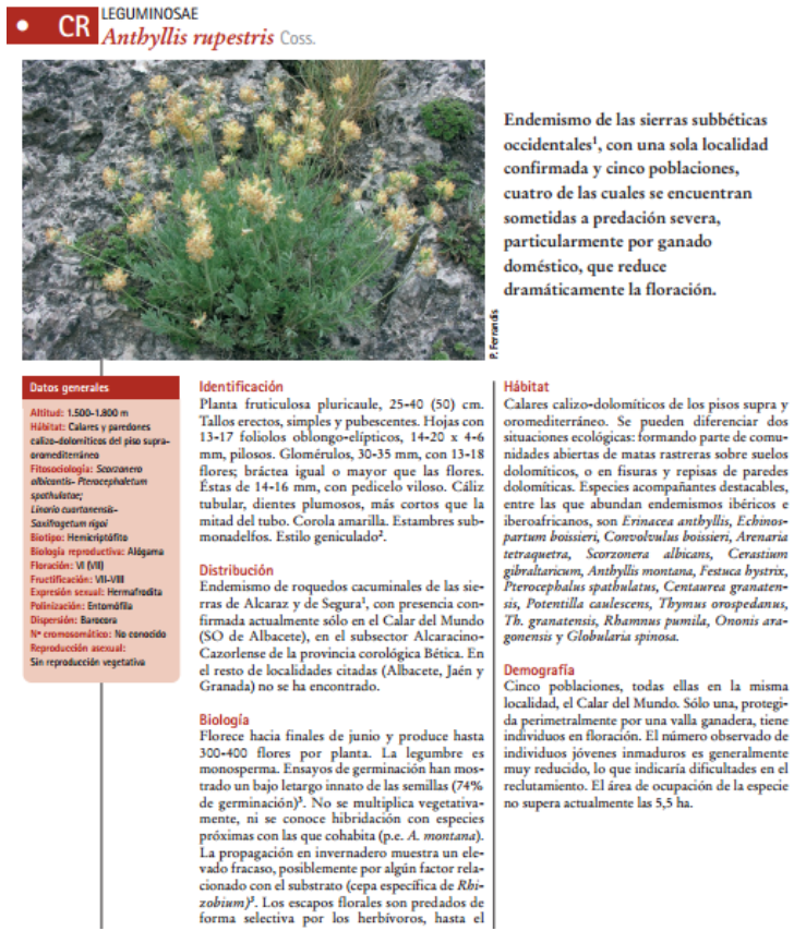 Genetic characterization and variation within and among populations of Anthyllis rupestris Coss. and endangered endemism of southern Spain