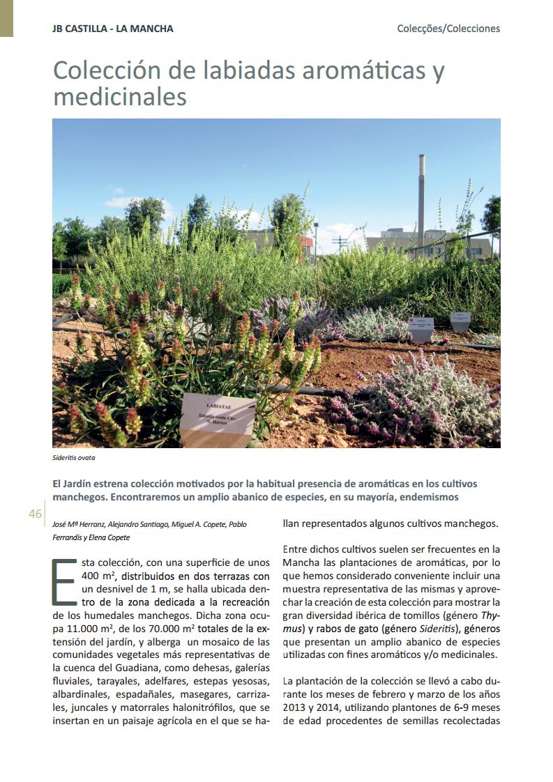 Colección de labiadas aromáticas y medicinales en el Jardín Botánico de Castilla-La Mancha.