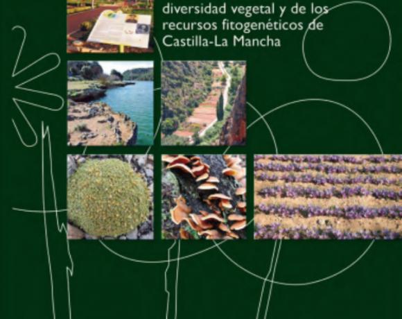 Medidas actuales de conservación de la flora y de los recursos fitogenéticos en Castilla-La Mancha. Espacios naturales protegidos, instalaciones ex situ y colecciones de germoplasma.