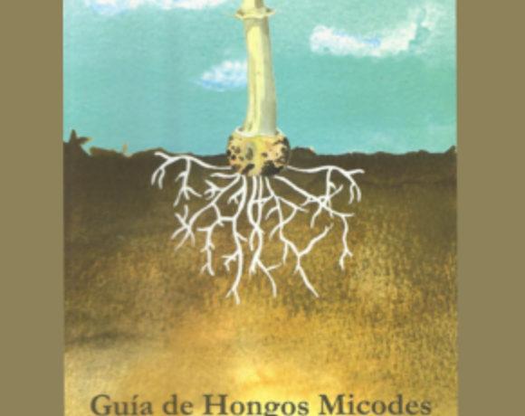 Guía de hongos Micodes